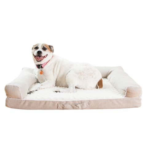 Armarkat Memory Foam Model D07B Dog Bed