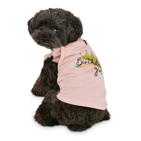 Bond & Co. Birthday Girl Dog Tank Top