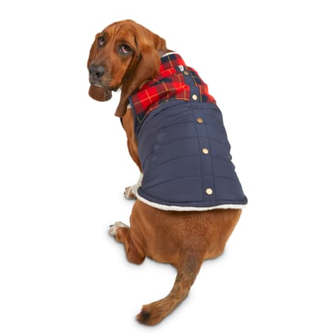 Bond & Co. Flannel Color Block Dog Jacket