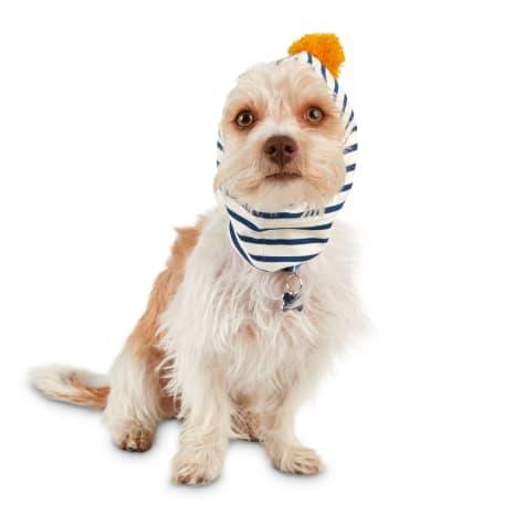 Bond & Co. Golden Pom-pom Dog Balaclava