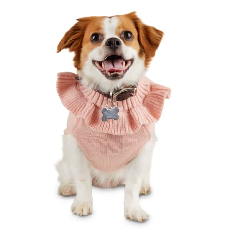 Bond & Co. Bougie Princess Dog Sweater