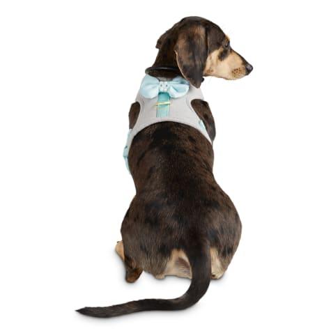 Bond & Co. Pampered Princess Dog Harness