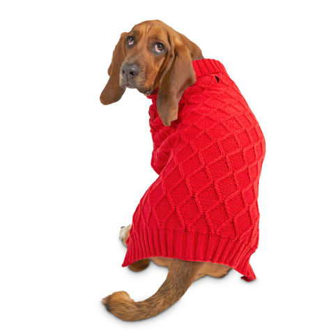 Bond & Co. Cable Knit Red Dog Sweater