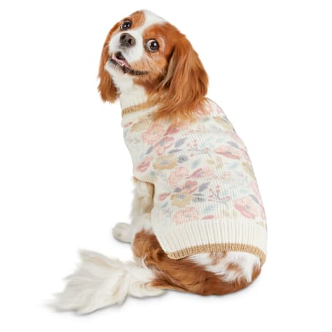 Bond & Co. Castle Garden Dog Sweater