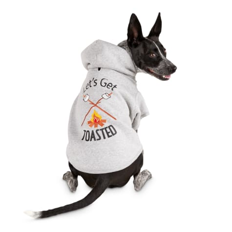 Bond & Co. Toasty Heather Grey Dog Hoodie