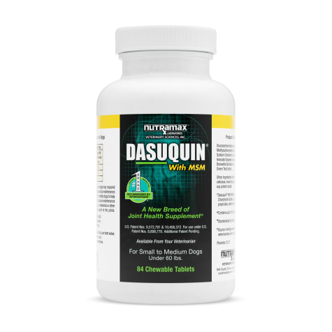 DASUQUIN MSM Chewable Tablets For Small to Medium Dogs Under 60 lbs.