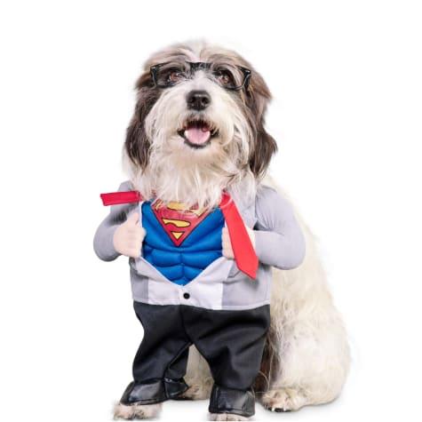DC Justice League Superman Illusion Dog Suit