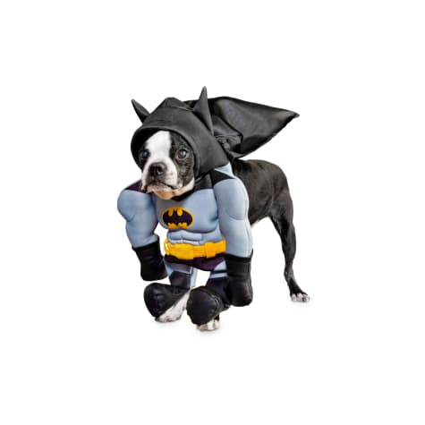 DC Justice League Batman Illusion Dog Suit