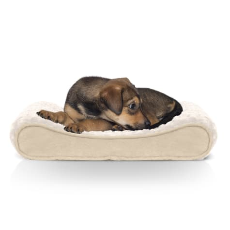 FurHaven Ultra Plush Luxe Lounger Orthopedic Dog Bed Cream