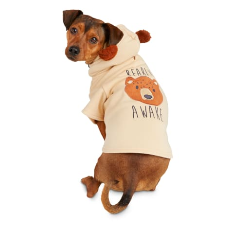 Bond & Co. Bearly Awake Dog Hoodie