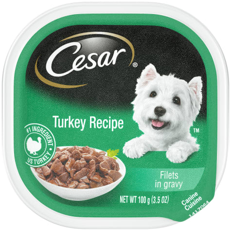 Cesar Filets in Gravy Turkey Recipe Wet Dog Food