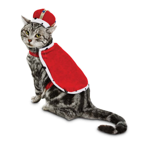 Bootique King Purrington Cat Costume