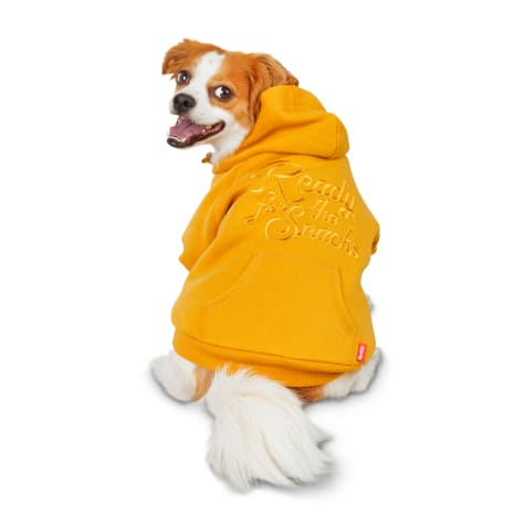 Reddy Ready for the Snacks Dog Hoodie