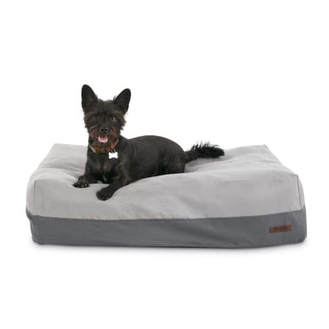 Reddy Lounger Orthopedic Black and Grey Dog Bed