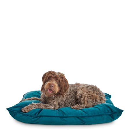 You & Me Teal Lounger Dog Bed