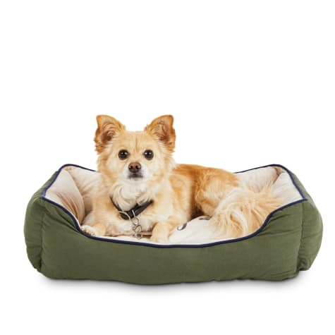 You & Me Fur-iendly Reminder Nester Dog Bed