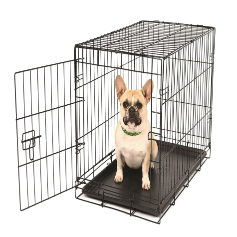 Carlson Pet Products Small Single Door Wire Crate