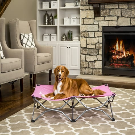Carlson Pet Products Pink Portable Pup Pet Bed