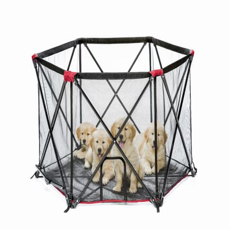 Carlson Pet Products Red Six Panel Pet Pen