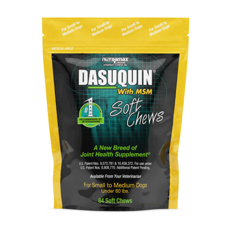 DASUQUIN MSM Soft Chews For Small to Medium Dogs