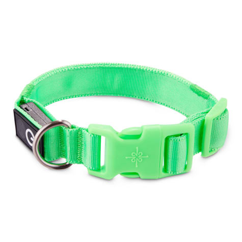 Good2Go Neon Green LED Light-Up Dog Collar