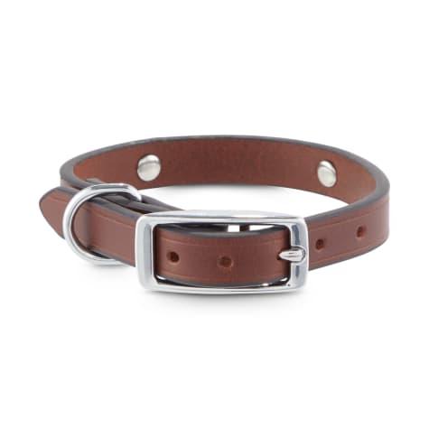 Bond & Co. Studded Leather Dog Collar
