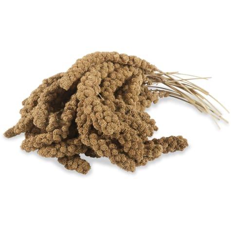 Drs. Foster and Smith Golden-Sunburst Millet Wild Bird Seed