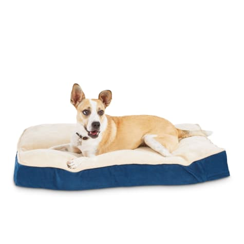 Animaze Navy Lounger Dog Bed