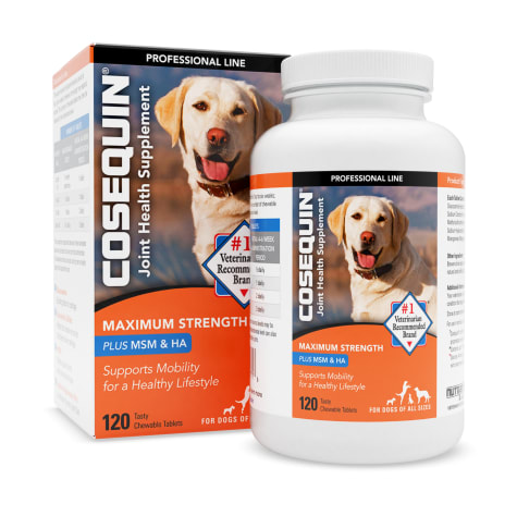 Cosequin DS Maximum Strength Plus MSM & Omega-3's Chewable Tablets