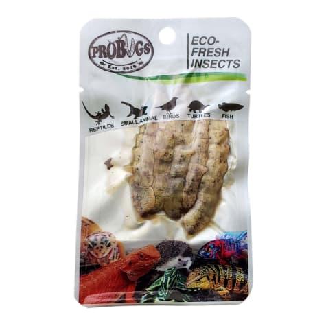 Pro Bugs Eco Fresh Silkworm