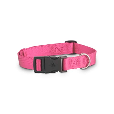 Good2Go Adjustable Pink Nylon Dog Collar