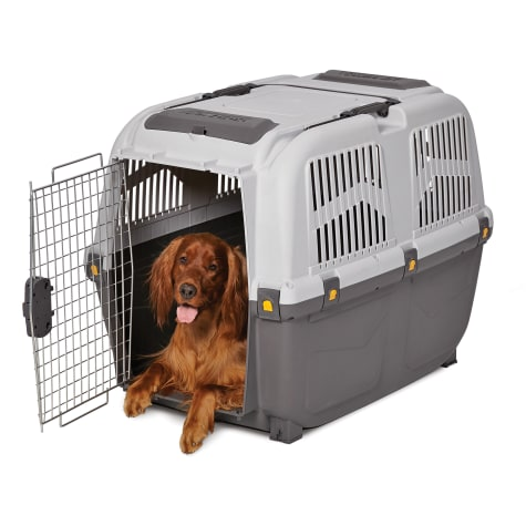 Midwest Skudo Plastic Travel Carrier for Dogs