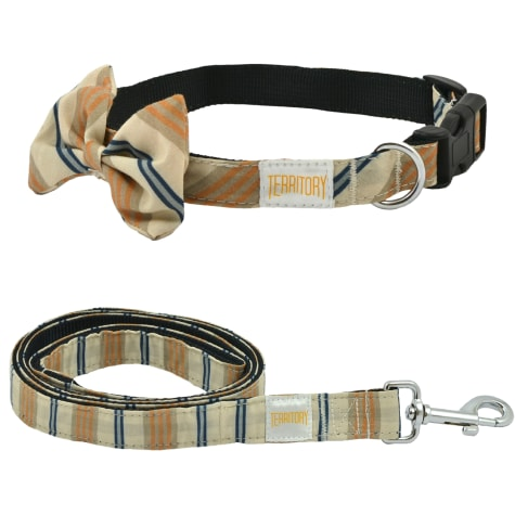 Territory Stripe Bowtie Collar & Leash Bundle for Dogs