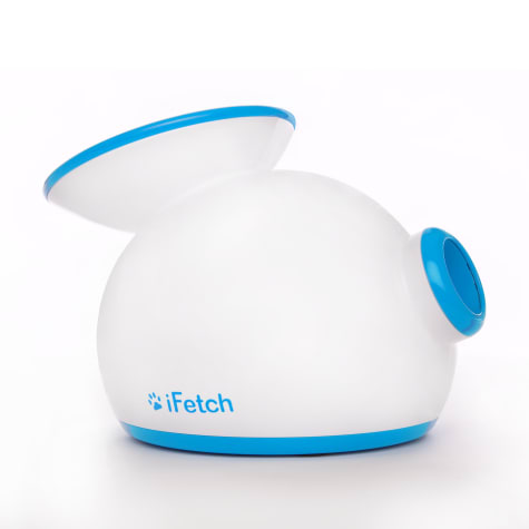 iFetch Interactive Launches Tennis Balls Dog Toys