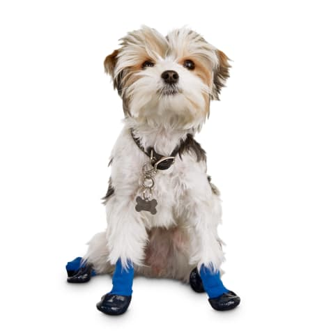 Good2Go Blue Gripper Dog Socks
