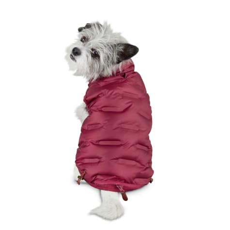 Reddy Maroon Zip-and-Stow Dog Puffer Jacket