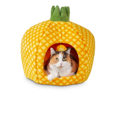 You & Me Pineapple Cat Bed