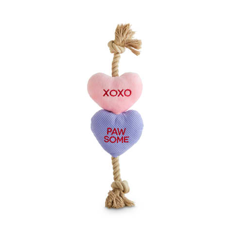 Bond & Co. Valentine's Day Pair of Hearts Plush & Rope Dog Toy