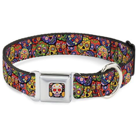 Buckle-Down Seatbelt Buckle Dog Collar Colorful Calaveras Stacked