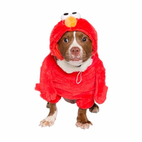 Pet Krewe Elmo Costume for Dogs