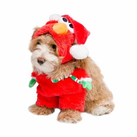 Pet Krewe Santa Elmo Costume for Dogs