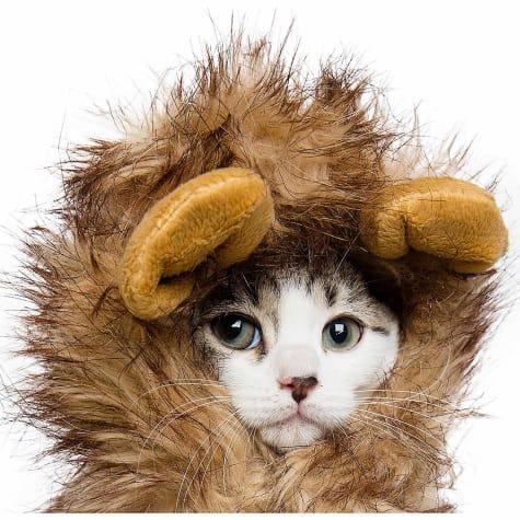 Pet Krewe Lion Mane Costume for Pets