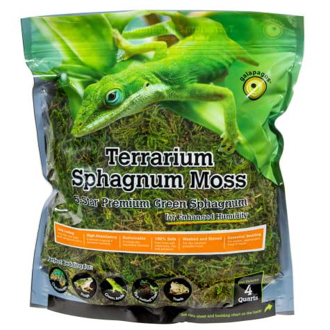 Galapagos Terrarium Sphagnum Moss