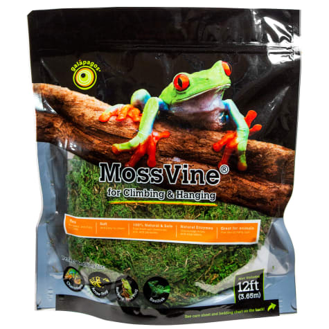 Galapagos MossVine
