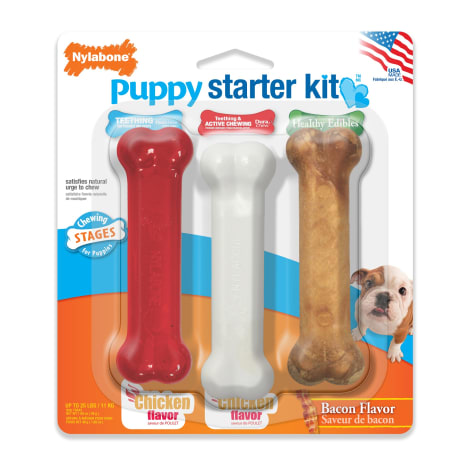 Nylabone Holiday Puppy Starter Kit for Dogs