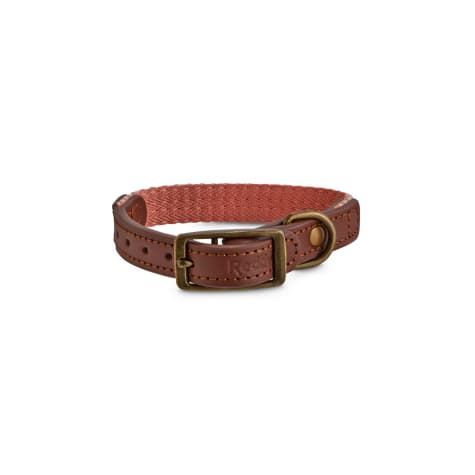 Reddy Pink Coral Chevron & Leather Dog Collar