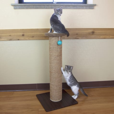 Kitty City Scratch Perch for Cats