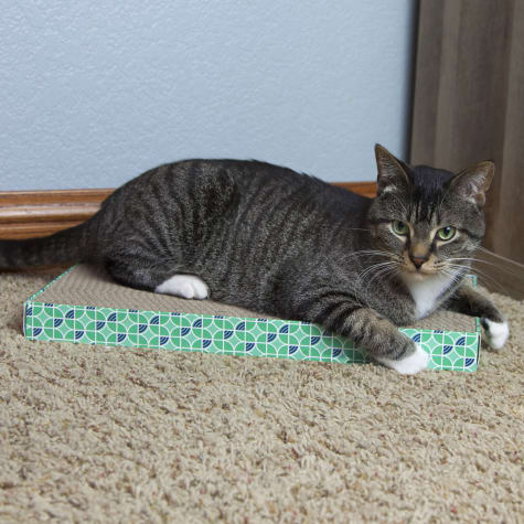 Kitty City Corrugate Scratchers for Cats
