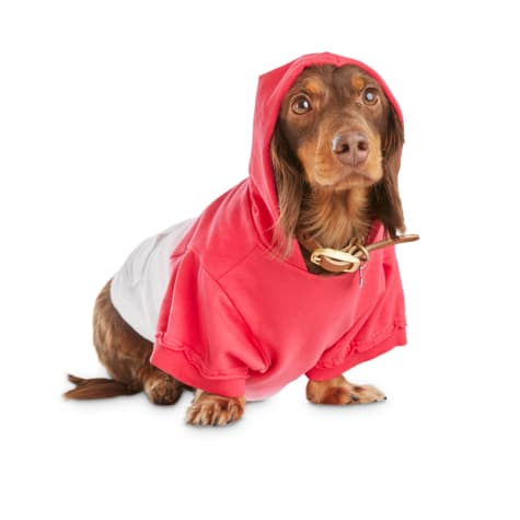 Bond & Co. Red Dip-Dye Dog Hoodie