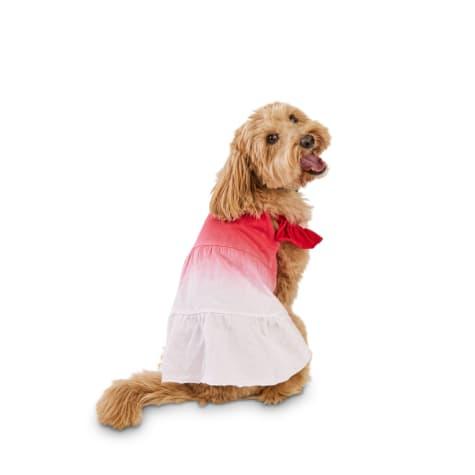 Bond & Co. Red Dip-Dye Dog Dress